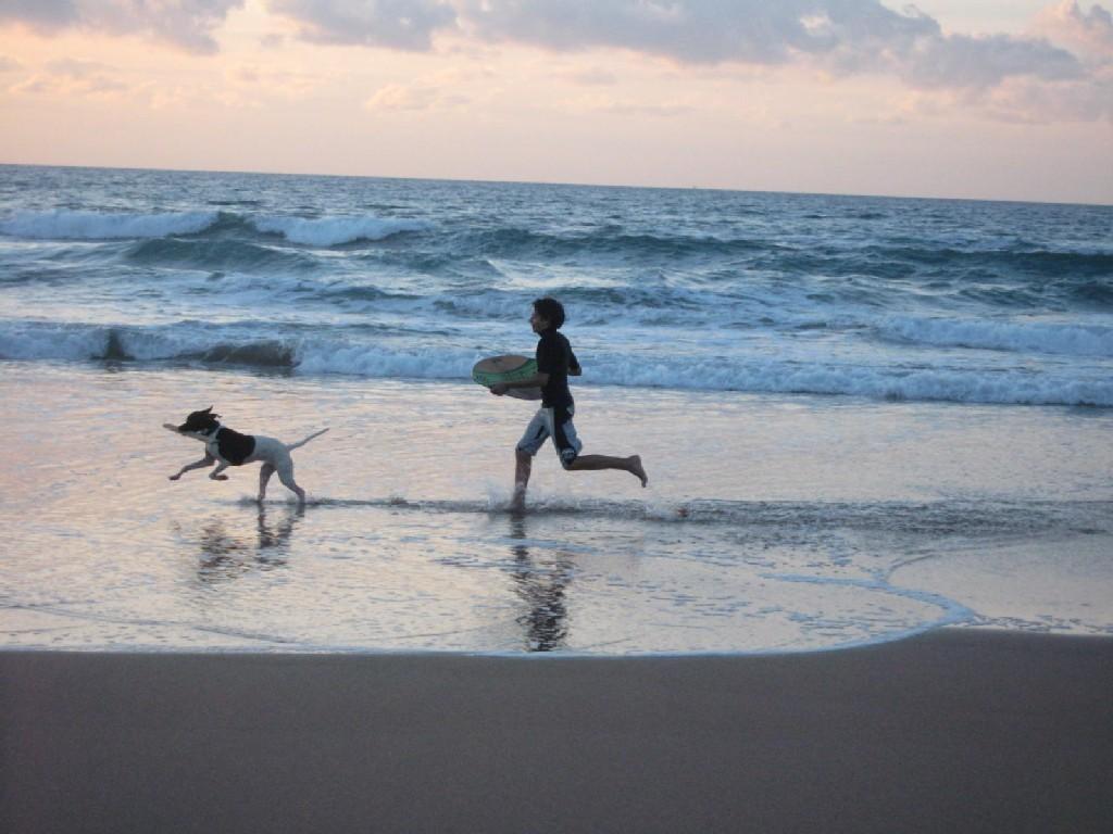 bimbo-cane-corrono-spiaggia