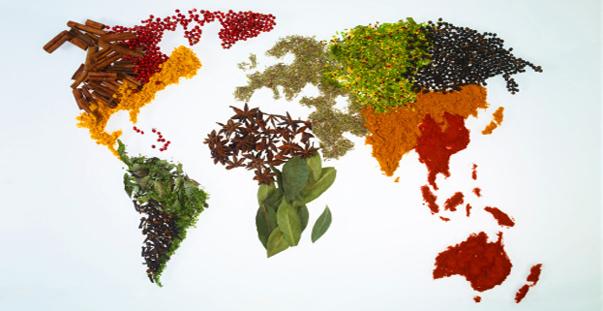 pianeta-cibo-terra.expo-2015jpg