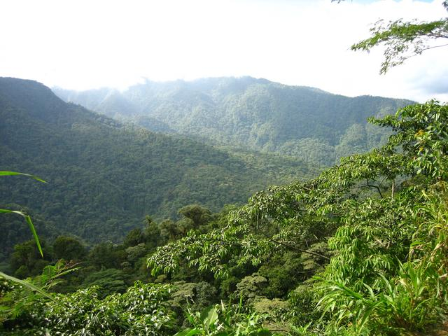 Area -verde-de- Conservación -Guanacaste-costa-rica