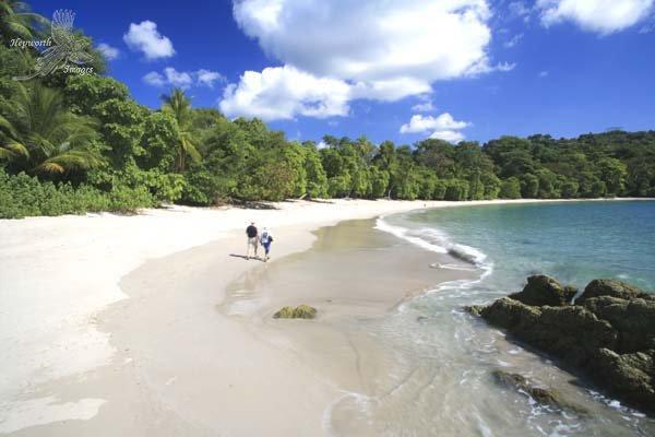 spiaggia-parco-manuel-antonio-costa-ricajpg