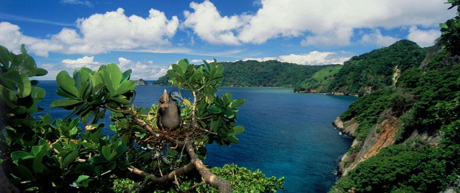 paesaggio-cabo-blanco-reserva-natural-costa-rica