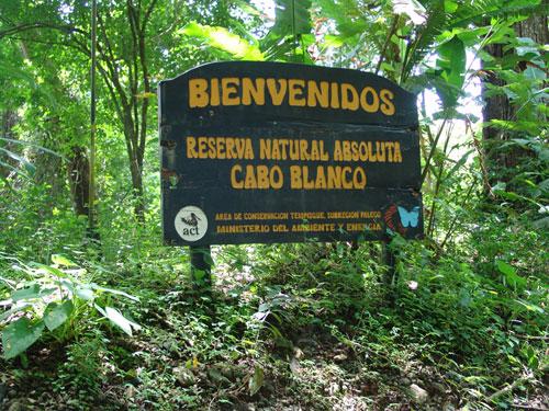 bienvenidos-riserva-naturale-capo-blanco-costa-rica