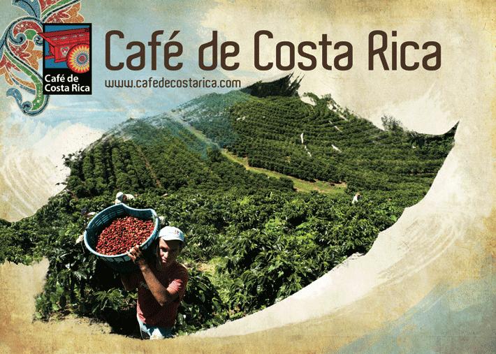 tour-del-caffè-costa-rica
