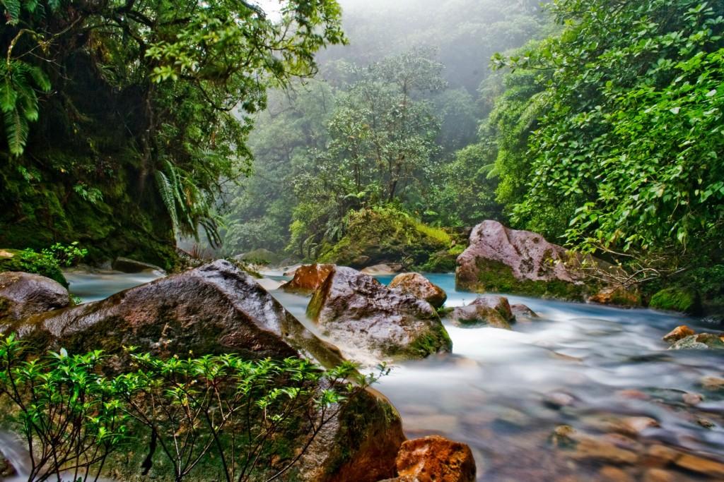 costa-rica-polmone-verde-foreste