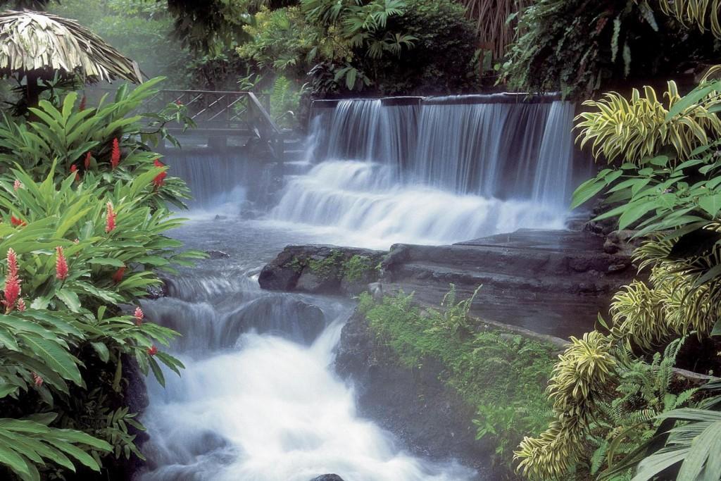 foresta-costa-rica-polmone-verde-