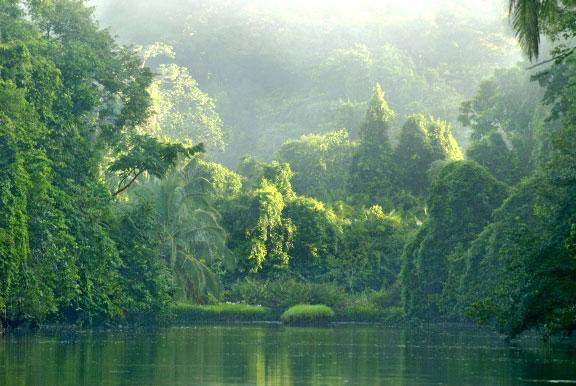 penisola di Osa in Costa Rica le più spettacolari del mondo