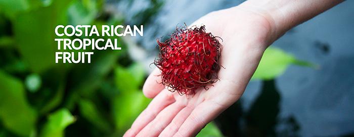 Frutti-esotici-e-bizzarri-costa_rica_tropical_fruit